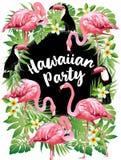 Partito hawaiano Vector l'illustrazione degli uccelli tropicali, i fiori, foglie Immagine Stock