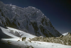 Partito Trekking a 19.000 ' Fotografie Stock