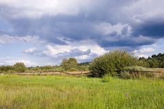 Partly abandoned meadow. Partly abandoned natural meadows under summertime cloudy sky Stock Photography