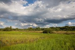 Partly abandoned natural meadows Royalty Free Stock Photography