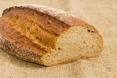 Brown bread with the whole sprouted wheat grains on sackcloth. Partly cut oval loaf of the wheat and rye sprouted bread with added whole sprouted wheat grains Royalty Free Stock Image