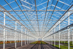 Partly empty greenhouse against a blue sky Stock Photography