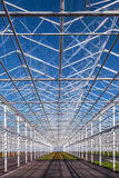 Partly empty greenhouse against a blue sky Royalty Free Stock Photography