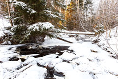 Partly frozen stream in Karelian wood Royalty Free Stock Image