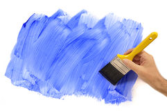 Man holding paintbrush painting blue wall, home decorating, white background, copy space Royalty Free Stock Image