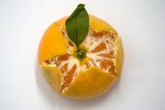 Partly Peeled mandarin Royalty Free Stock Photos