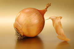 Partly peeled onion Stock Image