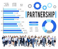 Partnership Partner Team Teamwork Organization Concept Royalty Free Stock Image