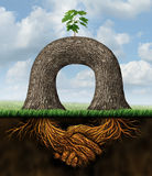 Partnership Power. Business concept with two trees joining forces together to create a new growth opportunity with the roots of the plant as symbol of shaking Stock Image