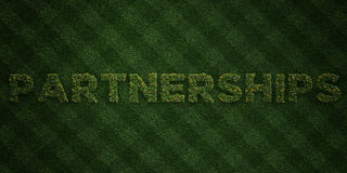 PARTNERSHIPS - fresh Grass letters with flowers and dandelions - 3D rendered royalty free stock image. Can be used for online banner ads and direct mailers Royalty Free Stock Images