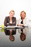 Partnery biznesowi Zdjęcie Stock