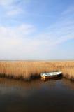 Partons pêcher Image stock