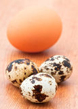 Partridge eggs and egg chicken Royalty Free Stock Image