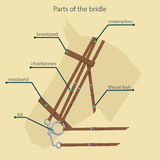 Parts of bridle with names shown Royalty Free Stock Image