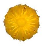Parts d'ananas Image libre de droits