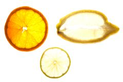 Parts de citron Photo stock