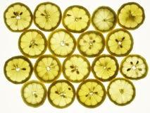 Parts de citron Photographie stock libre de droits
