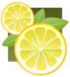 Parts de citron illustration stock