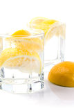 Parts de l'eau et de citron de seltz Images libres de droits