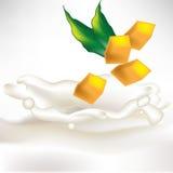 Parts de mangue dans l'éclaboussure de lait avec la lame Image stock