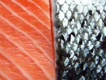 Parts des saumons photographie stock libre de droits