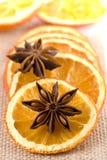 parts oranges sèches par anis image libre de droits