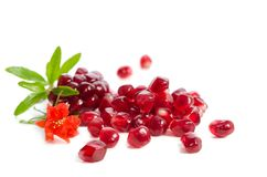 Parts of a pomegranate with pomegranate seeds and leaves, flower. S on white background royalty free stock image