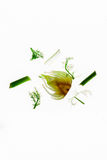 Parts of a raw fennel thinly cut open. Royalty Free Stock Images