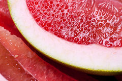 Parts of tropical fruit of grapefruit. Stock Photography