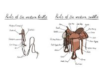 Parts of western saddle and bridle with text letters description. Royalty Free Stock Photos