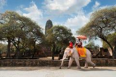 Parturister som rider elefanten, rider runt om Ayutthaya historiskt s Arkivbild