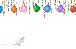 Party. Smart mouse isolated on a white background Royalty Free Stock Photos