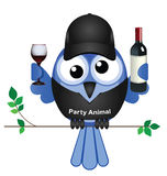 Party Animal Stock Images