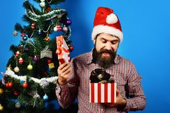 Party celebration and christmas concept. Dog year holiday. And xmas. Guy in Santa hat holds puppy in box. Christmas man with beard and happy face looks at pet stock photos
