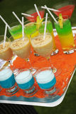 Party cocktail tray Royalty Free Stock Images