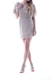 Party dress, white background Stock Photography