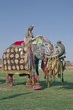 Party Elephant Royalty Free Stock Photos