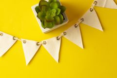 Party flags, garland over yellow background with decorative succulent plant, celebration concept. Space for text. Party flags, garland over yellow background royalty free stock photo