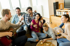 Party at home Stock Photography