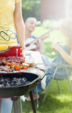 Party In A Garden With Guitar Royalty Free Stock Photo