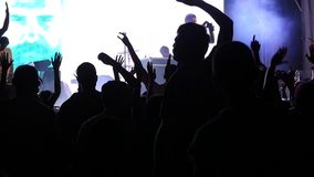 Party In Nightclub stock footage