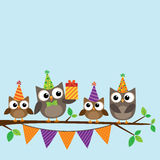 Party owls card Royalty Free Stock Image