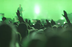 Party people. Cheering crowd at a concert Royalty Free Stock Image
