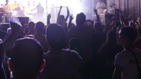 Party People At A Concert stock video