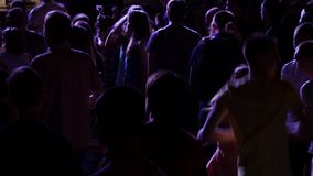 Party People At A Concert stock video footage