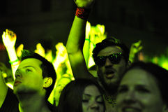 Party people during a live concert Royalty Free Stock Images