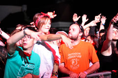 Party people during a live concert Stock Photography