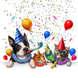 Party Pet Celebration. And new year partying as a group of pets as a happy dog cat bird and hamster celebrating an anniversary or birthday party with 3D Stock Photography