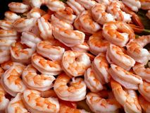 Party Platter Shrimp Royalty Free Stock Photo