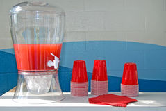 Party Punch Royalty Free Stock Photography